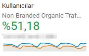 non brand organik trafik artışı %51 oldu
